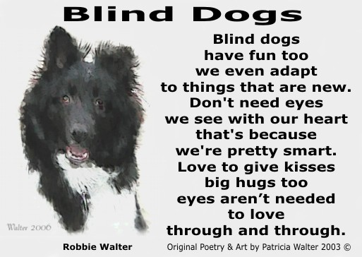 Blind Dog Brothers - Blind Date