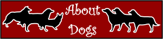 About dogs logo featuring original poetry & art by Patricia Walter. Also photos and stories by other dog lovers.